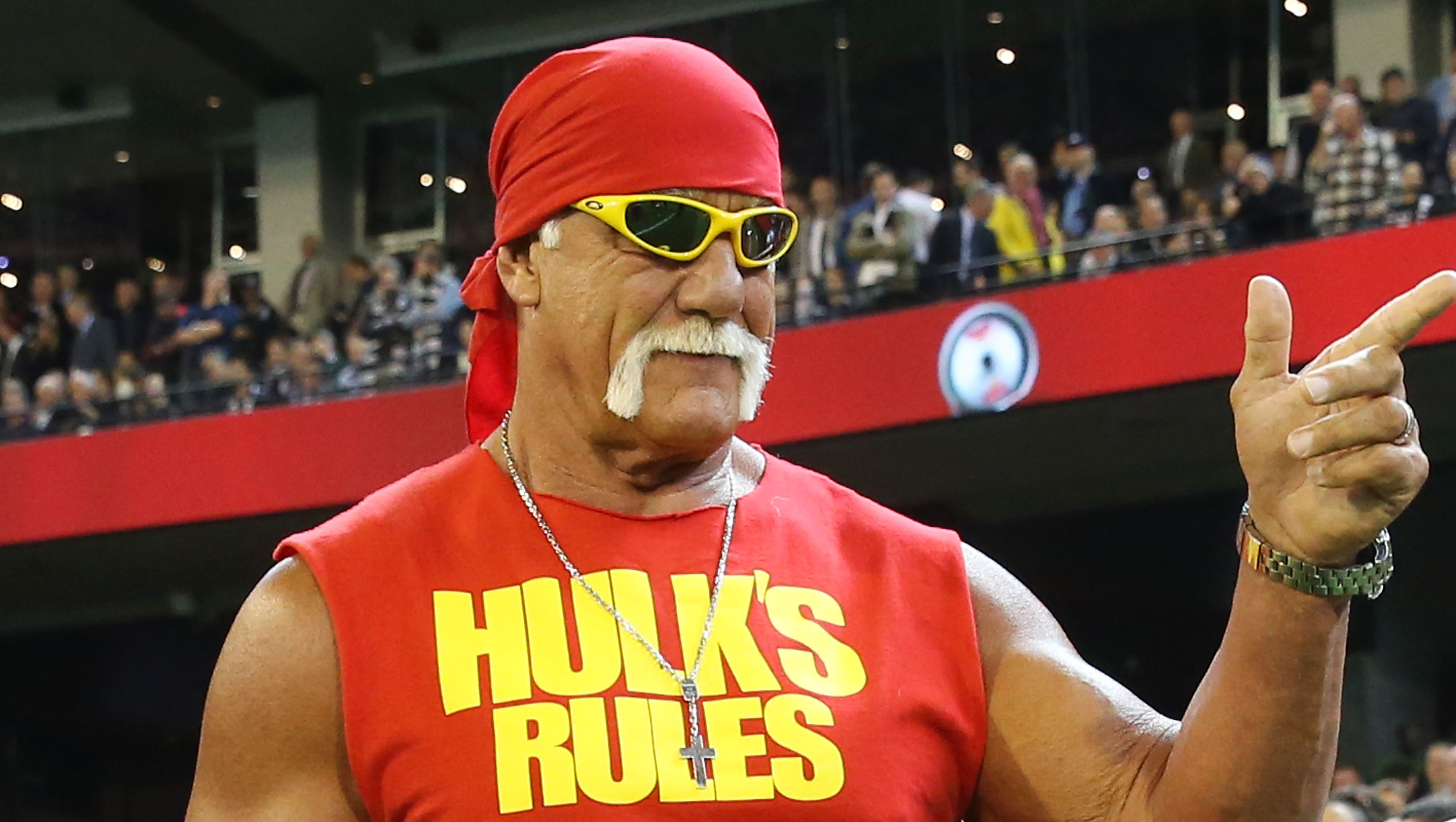 Image result for Hulk Hogan,