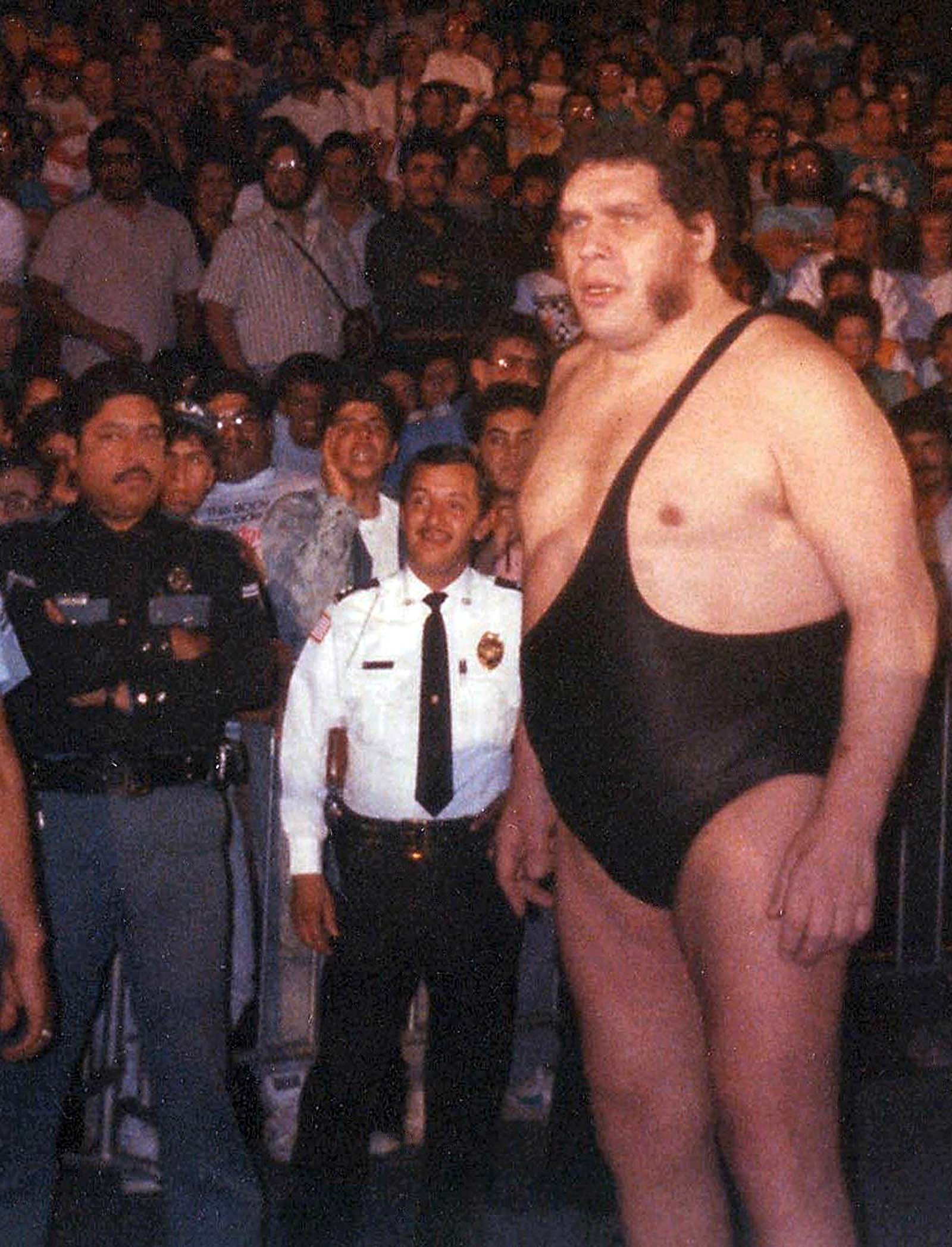Image result for Andre the Giant's